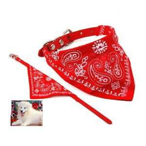 Cute Personalized Pet Dog Bandana Collar S Size in Red