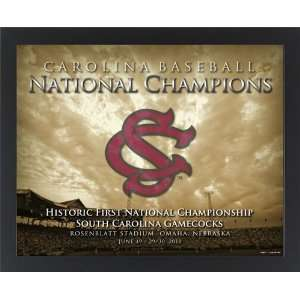 South Carolina Gamecocks 2010 National Champions Baseball Print (8 x