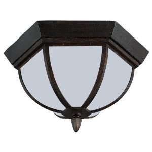 Sea Gull 79136BL 08 Outdoor Ceiling Light