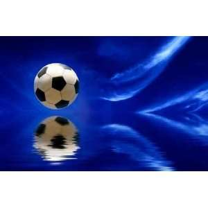 Soccer Ball   72W x 47H   Peel and Stick Wall Decal by