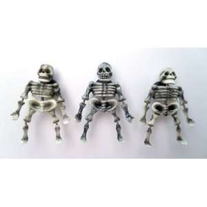 Skeleton   Refrigerator Bobble Magnet (Set of 3)